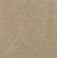 Salem Grey Limestone
